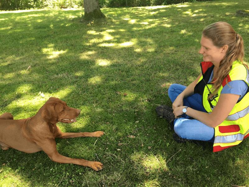 Interview: Der Magyar Vizsla als Rettungshund