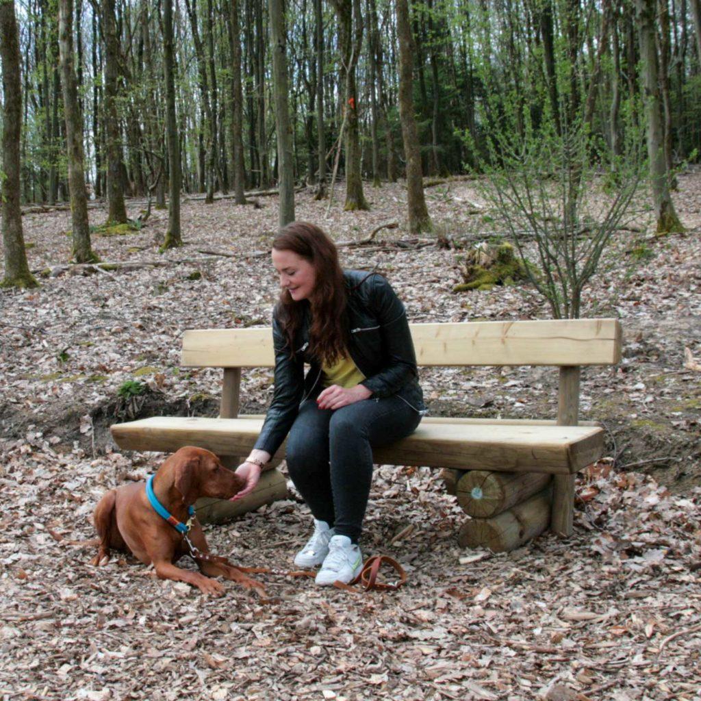 Vizsla wird nach erfolgreicher Ruheübung gelobt mit Leckerlie